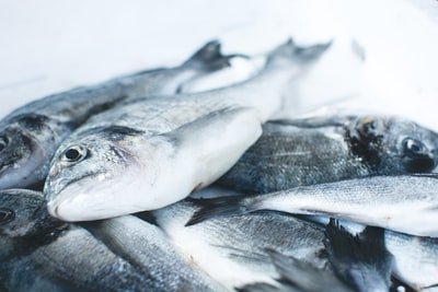 What do you need to cook up a seafood dinner?